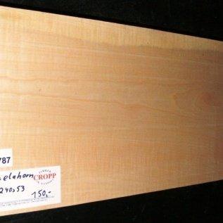Sycamore, fiddleback, Guitar-Body, 550 x 240 x 53 mm, 4,6 kg