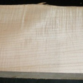 RIEGELAHORN, Gitarrenkorpus, 550 x 210 x 50 mm, 5,3 kg