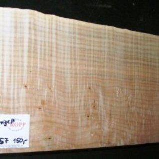 Softmaple, Guitar-Body, 565 x 205 x 57 mm, 3,7 kg