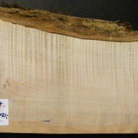 """SPITZAHORN, """"Soft Maple"""", geriegelt, 540 x 190 x 55 mm, 3,8  kg"""