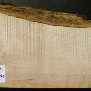 Softmaple, Guitar-Body, 540 x 190 x 55 mm, 3,8 kg