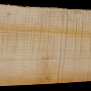 Soft Maple, fiddleback, guitar body, 550 x 204 x 53 mm, 4 kg