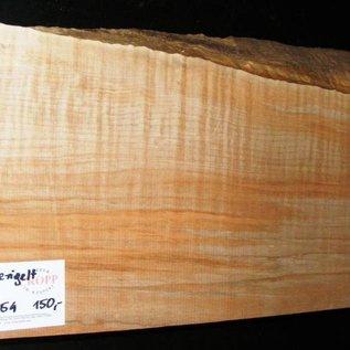 """Ahorn, amerik. SPITZAHORN, """"Soft Maple"""", geriegelt, 558 x 200 x 54 mm, 3,9  kg, Acer macrophyllum"""