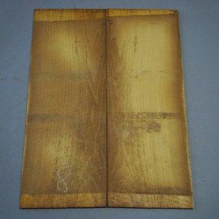 Maulbeerbaum Böden, ca. 550 x 220 x 4 mm, spiegelbildlich, Einschnitt 2008