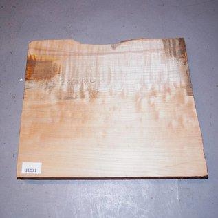 Soft Maple, amerikanischer Spitzahorn ca. 340/370 x 280 x 45 mm, 3,1 kg
