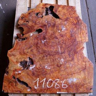 Kampfer Tischplatte, ca. 1000 x 750 x 48 mm, 35 kg, 11086