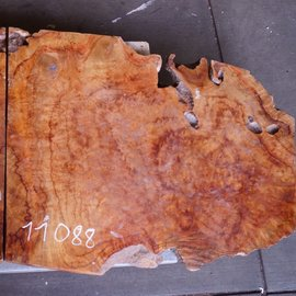 Camphor table top, approx. 100 x 750 x 48 mm, 37 kg, 11088