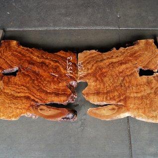 Kampfer Tischplatten Paar, ca. 1250 x 800 x 53/70 mm, 110 kg, 11553+54