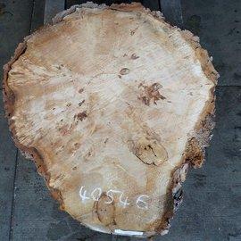 Poplar Burl, slab, table top, approx. 930 x 800 x 80 mm, 40546