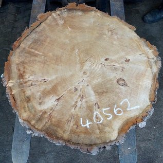Poplar Burl, slab, table top, approx. 800 x 800 x 80 mm, 40562