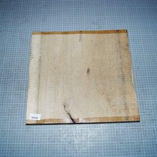 Elm, approx. 370 x 380 x 50 mm, 4,2 kg