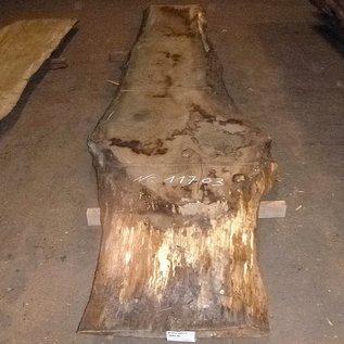 Oak table top, approx. 3500 x 660 x 65 mm, 11703