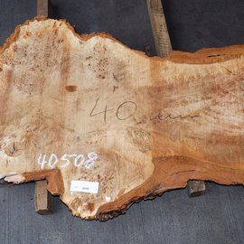 Mappa Burl slab, approx. 1350 x 600 x 40 mm, 40508