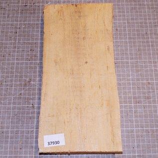 Birke schlicht ca. 320 x 140 x 40 mm, 1,0 kg