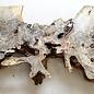 Buckeye Maser Baumscheibe, ca. 1380 x 280/380/510 x 52 mm, 10,9 kg