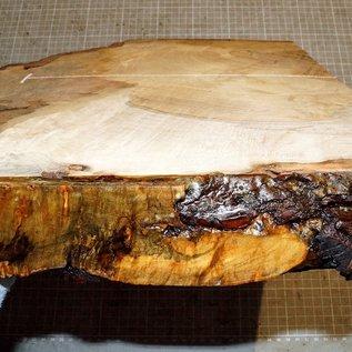Spitzahorn Maser ca. 450 x 270 x 52 mm, 3,5 kg