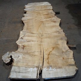 Mappa burl table top, approx. 3400 x 1180 (1500) x 52 mm, 11676