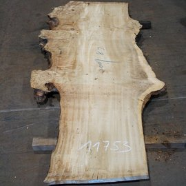 Mappa burl table top, approx. 2000 x 890 (1200) x 65 mm, 11753
