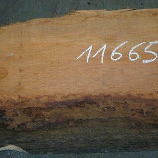 Amouk, Boiré, Tischplatte, ca. 3000 x 380 x 52 mm, 11665