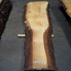 Libanon Cedar, table top, approx. 3100 x 480/690/1060 x 80 mm, 11786