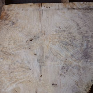 Spruce burl, table top, approx. 960 x 840 x 52 mm, 40549