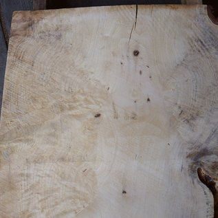 Spruce burl, table top, approx. 950 x 640 x 52 mm, 40546