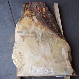 Spruce burl, table top, approx. 720 x 550 x 52 mm, 40543