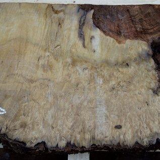 Laurel, burl slab, approx. 900 x 500 x 63 mm, 40553