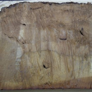 Laurel, Maserplatte, ca. 900 x 500 x 63 mm, 40553