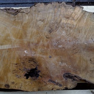 Laurel, Maserplatte, ca. 960 x 630 x 63 mm, 40555