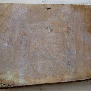 Laurel, burl slab, approx. 710 x 440 x 65 mm, 40720