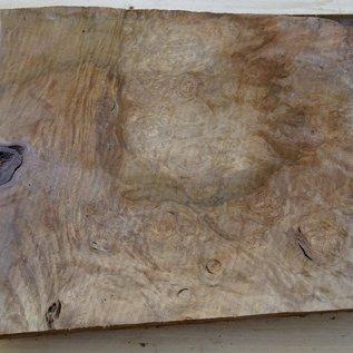 Laurel, burl slab, approx. 700 x 440 x 65 mm, 40721