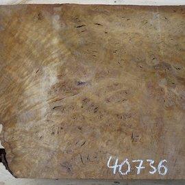 Laurel, burl slab, approx. 770 x 590 x 64 mm, 40736