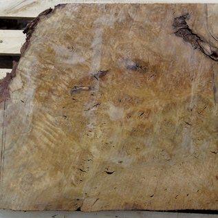 Laurel, Maserplatte, ca. 770 x 590 x 64 mm, 40736