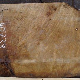 Laurel, burl slab, approx. 800 x 650 x 65 mm, 40738