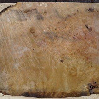 Laurel, Maserplatte, ca. 800 x 650 x 65 mm, 40738