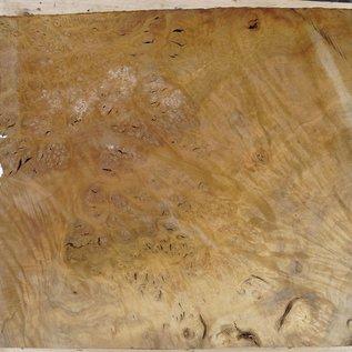 Laurel, Maserplatte, ca. 770 x 580 x 65 mm, 40740