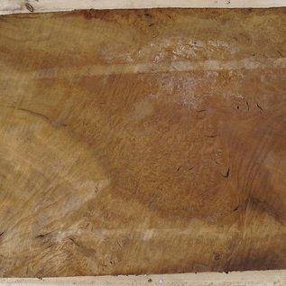 Laurel, burl slab, approx. 770 x 580 x 65 mm, 40740
