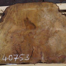 Laurel, burl slab, approx. 810 x 640 x 65 mm, 40753
