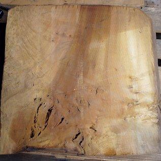 Laurel, Maserplatte, ca. 680 x 630 x 65 mm, 40763