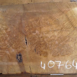 Laurel, burl slab, approx. 1200 x 620 x 65 mm, 40764