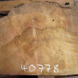 Laurel, burl slab, approx. 690 x 580 x 65 mm, 40778