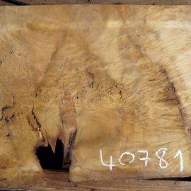 Laurel, burl slab, approx. 980 x 570 x 63 mm, 40781