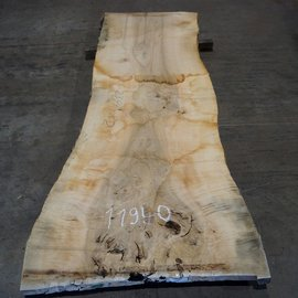 Ash burl, table top, approx. 2300 x 820 x 65 mm, 11940