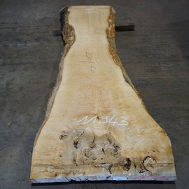 Ash burl, table top, approx. 2300 x 600 x 65 mm, 11943