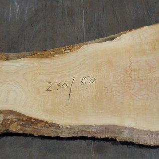 Esche Maser Tischplatte, ca. 2300 x 600 x 65 mm, 11943