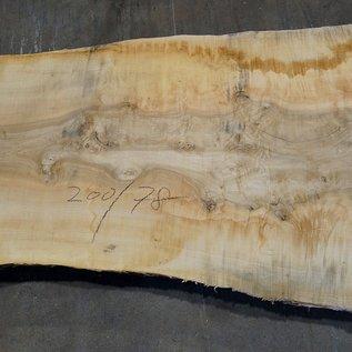 Esche Maser Tischplatte, ca. 2000(2300) x 780 x 65 mm, 11944