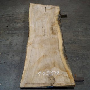 Olive Ash, table top, approx. 2400 x 740 x 65 mm, 11950