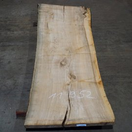 Olive Ash, table top, approx. 2400 x 820 x 65 mm, 11952