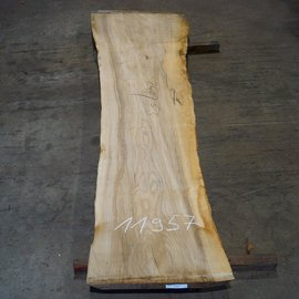 Olive Ash, table top, approx. 2400 x 530 x 65 mm, 11957